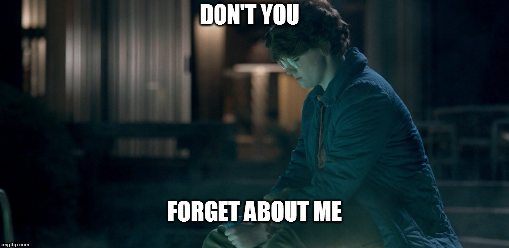 forgotten barb |  DON'T YOU; FORGET ABOUT ME | image tagged in stranger things,dont forget | made w/ Imgflip meme maker