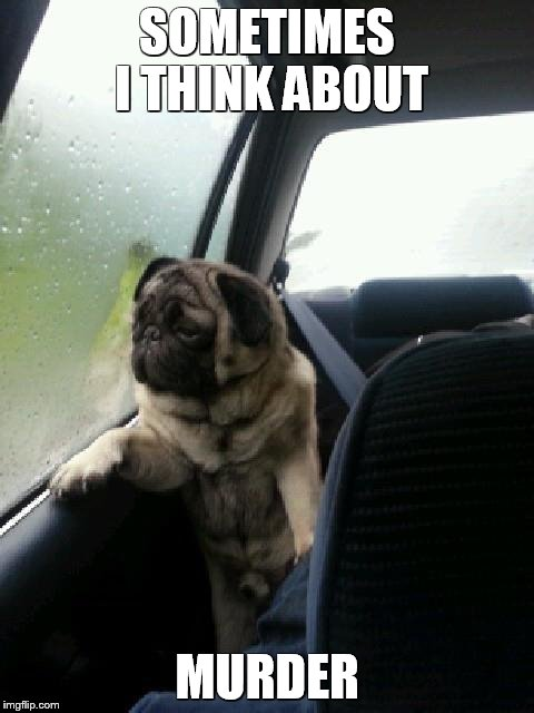 Vicious Pugs | SOMETIMES I THINK ABOUT MURDER | image tagged in introspective pug,funny memes,deep thoughts,murder | made w/ Imgflip meme maker
