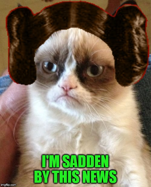 Grumpy Cat Meme | I'M SADDEN BY THIS NEWS | image tagged in memes,grumpy cat | made w/ Imgflip meme maker