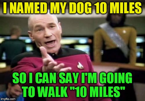 Picard Wtf Meme | I NAMED MY DOG 10 MILES SO I CAN SAY I'M GOING TO WALK ''10 MILES'' | image tagged in memes,picard wtf | made w/ Imgflip meme maker