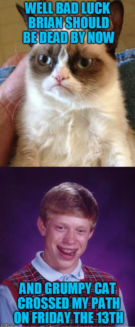 WELL BAD LUCK BRIAN SHOULD BE DEAD BY NOW AND GRUMPY CAT CROSSED MY PATH ON FRIDAY THE 13TH | made w/ Imgflip meme maker