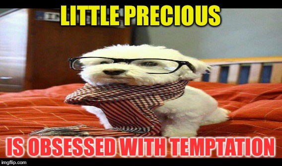 LITTLE PRECIOUS IS OBSESSED WITH TEMPTATION | made w/ Imgflip meme maker