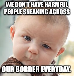 Skeptical Baby Meme | WE DON'T HAVE HARMFUL PEOPLE SNEAKING ACROSS OUR BORDER EVERYDAY. | image tagged in memes,skeptical baby | made w/ Imgflip meme maker