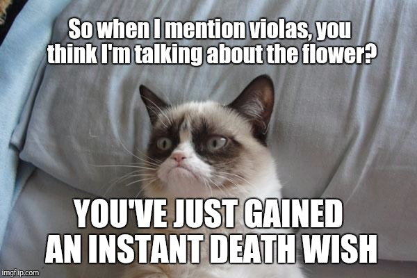 When I start talking about violas, and people think I'm talking about the flower, not the instrument... | So when I mention violas, you think I'm talking about the flower? YOU'VE JUST GAINED AN INSTANT DEATH WISH | image tagged in memes,grumpy cat,viola,music,thatbritishviolaguy,flower | made w/ Imgflip meme maker