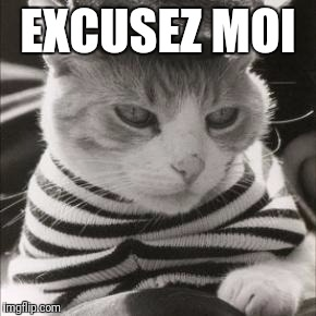 French Cat is French | EXCUSEZ MOI | image tagged in french cat is french | made w/ Imgflip meme maker