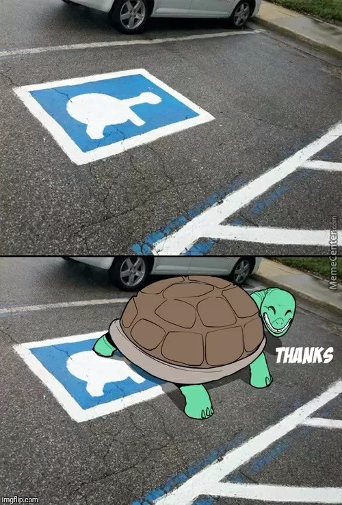 Turtle Parking | image tagged in turtle | made w/ Imgflip meme maker