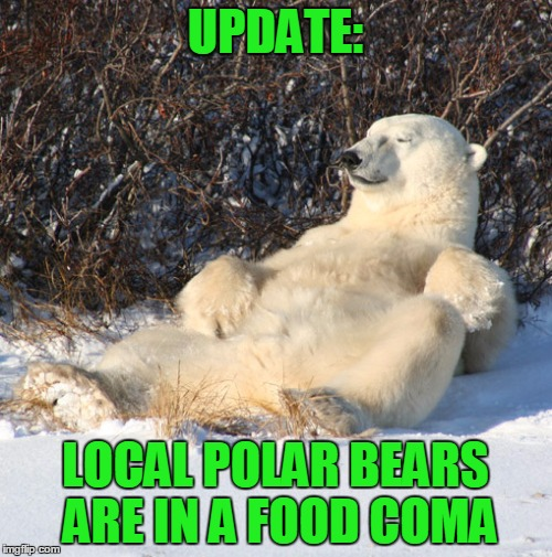 UPDATE: LOCAL POLAR BEARS ARE IN A FOOD COMA | made w/ Imgflip meme maker