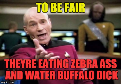 Picard Wtf Meme | TO BE FAIR THEYRE EATING ZEBRA ASS AND WATER BUFFALO DICK | image tagged in memes,picard wtf | made w/ Imgflip meme maker