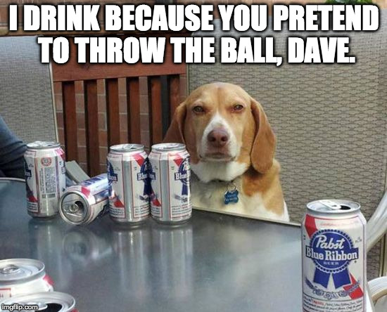 Bad human! Bad! | I DRINK BECAUSE YOU PRETEND TO THROW THE BALL, DAVE. | image tagged in dog beer,pretend,bacon,dog,beer,alcoholic | made w/ Imgflip meme maker