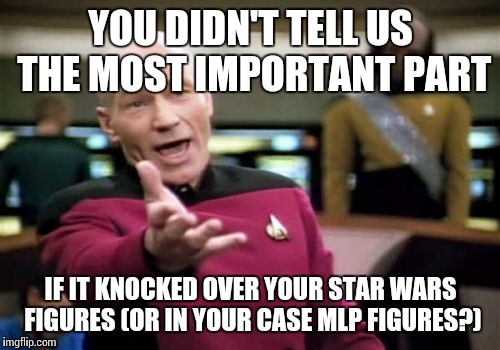 Picard Wtf Meme | YOU DIDN'T TELL US THE MOST IMPORTANT PART IF IT KNOCKED OVER YOUR STAR WARS FIGURES (OR IN YOUR CASE MLP FIGURES?) | image tagged in memes,picard wtf | made w/ Imgflip meme maker