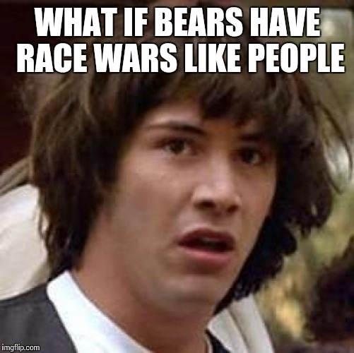 Conspiracy Keanu Meme | WHAT IF BEARS HAVE RACE WARS LIKE PEOPLE | image tagged in memes,conspiracy keanu | made w/ Imgflip meme maker