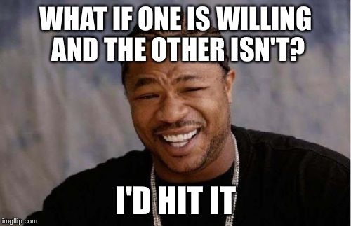 Yo Dawg Heard You Meme | WHAT IF ONE IS WILLING AND THE OTHER ISN'T? I'D HIT IT | image tagged in memes,yo dawg heard you | made w/ Imgflip meme maker