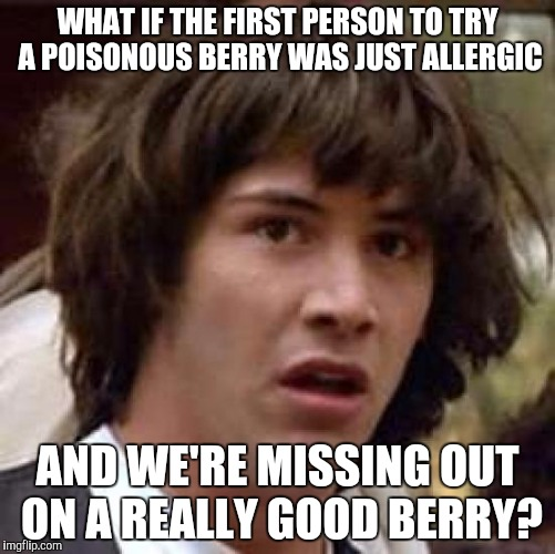Conspiracy Keanu Meme | WHAT IF THE FIRST PERSON TO TRY A POISONOUS BERRY WAS JUST ALLERGIC AND WE'RE MISSING OUT ON A REALLY GOOD BERRY? | image tagged in memes,conspiracy keanu | made w/ Imgflip meme maker