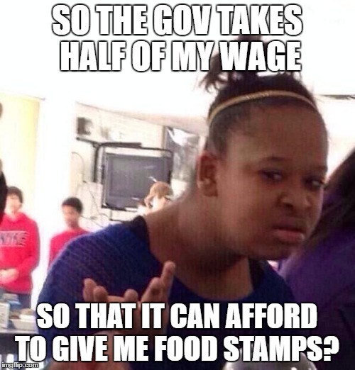 Black Girl Wat Meme | SO THE GOV TAKES HALF OF MY WAGE SO THAT IT CAN AFFORD TO GIVE ME FOOD STAMPS? | image tagged in memes,black girl wat | made w/ Imgflip meme maker