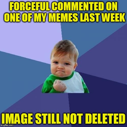 Success Kid Meme | FORCEFUL COMMENTED ON ONE OF MY MEMES LAST WEEK IMAGE STILL NOT DELETED | image tagged in memes,success kid | made w/ Imgflip meme maker