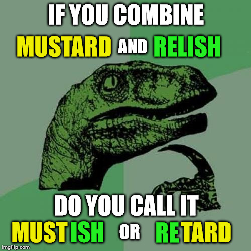 Philosoraptor Meme | IF YOU COMBINE AND MUSTARD RELISH DO YOU CALL IT MUST ISH RE TARD OR | image tagged in memes,philosoraptor | made w/ Imgflip meme maker
