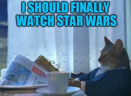 I saw the news and just had to check in to see how the imgflip community was doing! | I SHOULD FINALLY WATCH STAR WARS | image tagged in memes,i should buy a boat cat | made w/ Imgflip meme maker