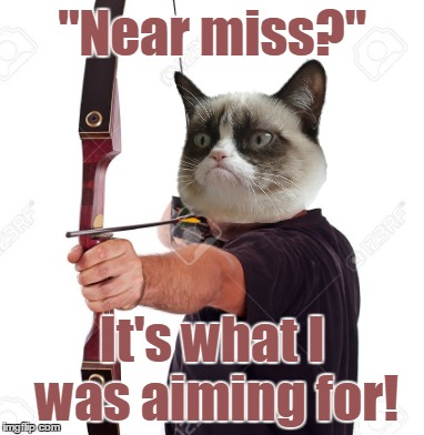 """Near miss?"" It's what I was aiming for! 