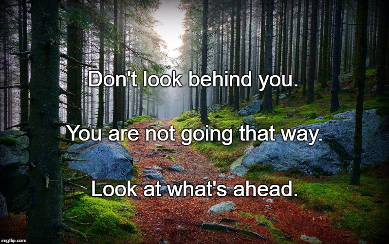 Don't look behind you. Look at what's ahead. You are not going that way. | image tagged in forest path | made w/ Imgflip meme maker