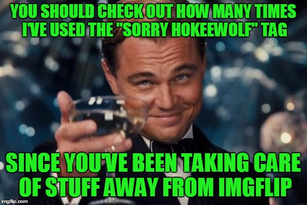 "Leonardo Dicaprio Cheers Meme | YOU SHOULD CHECK OUT HOW MANY TIMES I'VE USED THE ""SORRY HOKEEWOLF"" TAG SINCE YOU'VE BEEN TAKING CARE OF STUFF AWAY FROM IMGFLIP 