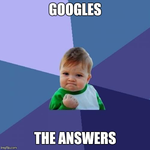 Success Kid Meme | GOOGLES THE ANSWERS | image tagged in memes,success kid | made w/ Imgflip meme maker