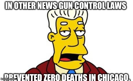 IN OTHER NEWS GUN CONTROL LAWS PREVENTED ZERO DEATHS IN CHICAGO. | made w/ Imgflip meme maker