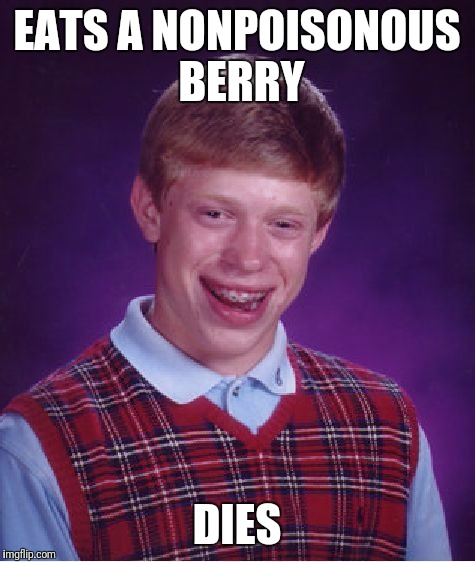 Bad Luck Brian Meme | EATS A NONPOISONOUS BERRY DIES | image tagged in memes,bad luck brian | made w/ Imgflip meme maker
