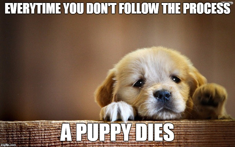 Follow the damn process... | EVERYTIME YOU DON'T FOLLOW THE PROCESS A PUPPY DIES | image tagged in sad puppy,puppy,process | made w/ Imgflip meme maker