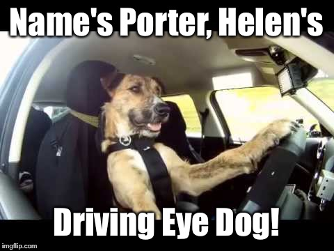 Name's Porter, Helen's Driving Eye Dog! | made w/ Imgflip meme maker