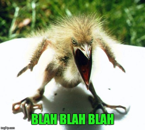 Angry bird | BLAH BLAH BLAH | image tagged in angry bird | made w/ Imgflip meme maker