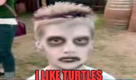 I LIKE TURTLES | made w/ Imgflip meme maker