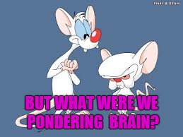 BUT WHAT WERE WE PONDERING  BRAIN? | made w/ Imgflip meme maker