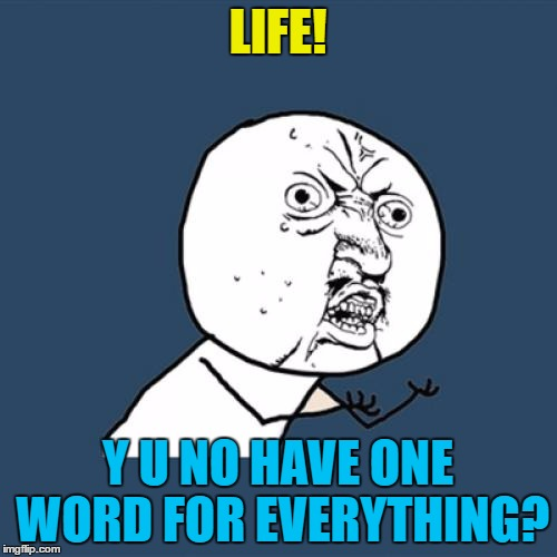 Y U No Meme | LIFE! Y U NO HAVE ONE WORD FOR EVERYTHING? | image tagged in memes,y u no | made w/ Imgflip meme maker