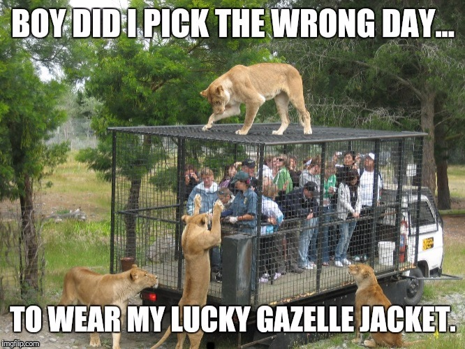 Wardrobe  malfunction | . | image tagged in sewmyeyesshut,funny memes,gazelle jacket | made w/ Imgflip meme maker