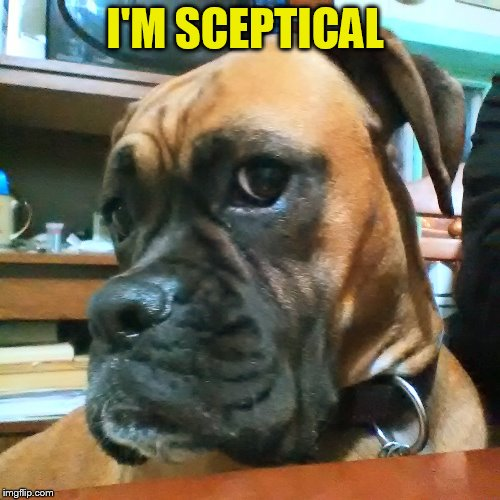 I'M SCEPTICAL | made w/ Imgflip meme maker