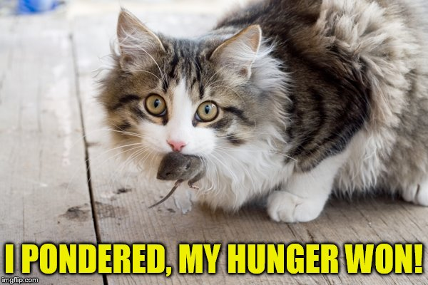 I PONDERED, MY HUNGER WON! | made w/ Imgflip meme maker