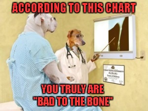 "Somehow I always knew...but now it's been confirmed!!! | ACCORDING TO THIS CHART YOU TRULY ARE ""BAD TO THE BONE"" 