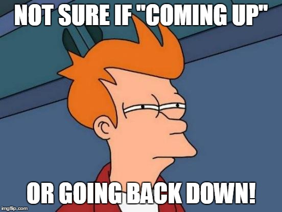 "Futurama Fry Meme | NOT SURE IF ""COMING UP"" OR GOING BACK DOWN! 
