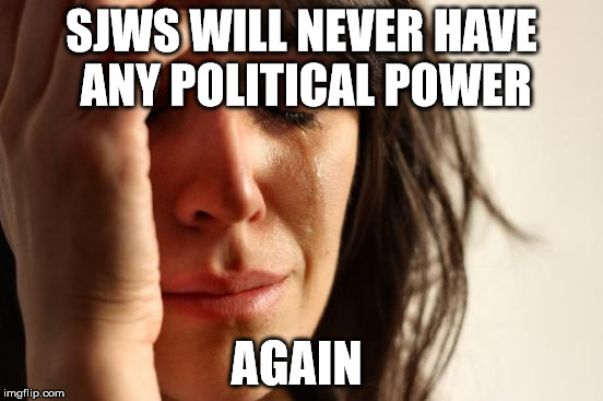 First World Problems Meme | SJWS WILL NEVER HAVE ANY POLITICAL POWER AGAIN | image tagged in memes,first world problems | made w/ Imgflip meme maker