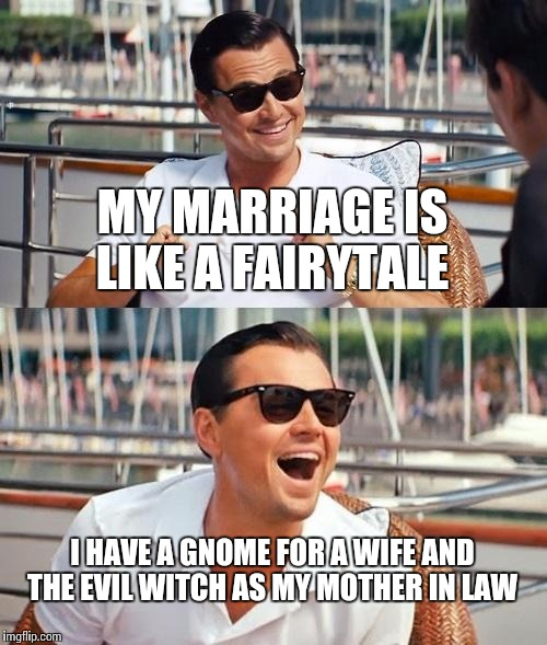 Leonardo Dicaprio Wolf Of Wall Street Meme | MY MARRIAGE IS LIKE A FAIRYTALE I HAVE A GNOME FOR A WIFE AND THE EVIL WITCH AS MY MOTHER IN LAW | image tagged in memes,leonardo dicaprio wolf of wall street | made w/ Imgflip meme maker