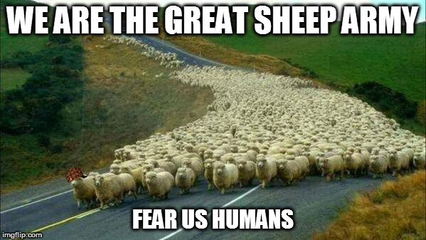 This is how the 1st sheep war begins | WE ARE THE GREAT SHEEP ARMY FEAR US HUMANS | image tagged in scumbag,sheep,army | made w/ Imgflip meme maker