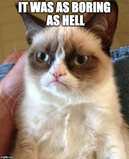 Grumpy Cat Meme | IT WAS AS BORING AS HELL | image tagged in memes,grumpy cat | made w/ Imgflip meme maker