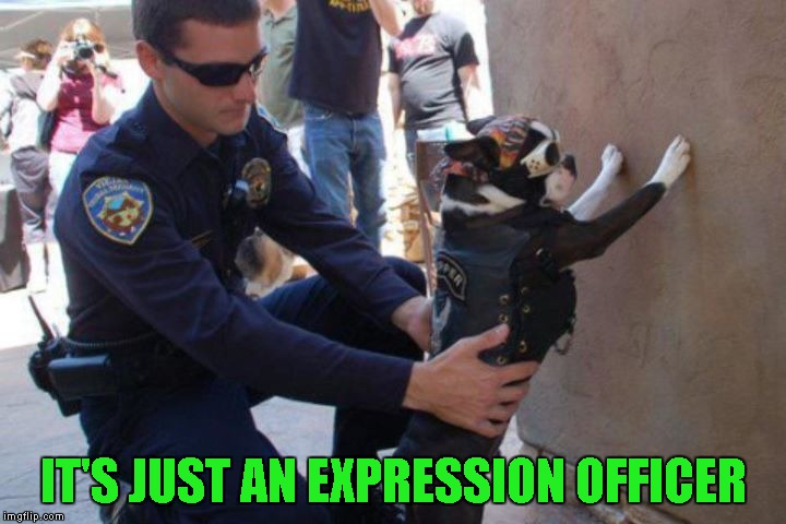 IT'S JUST AN EXPRESSION OFFICER | made w/ Imgflip meme maker