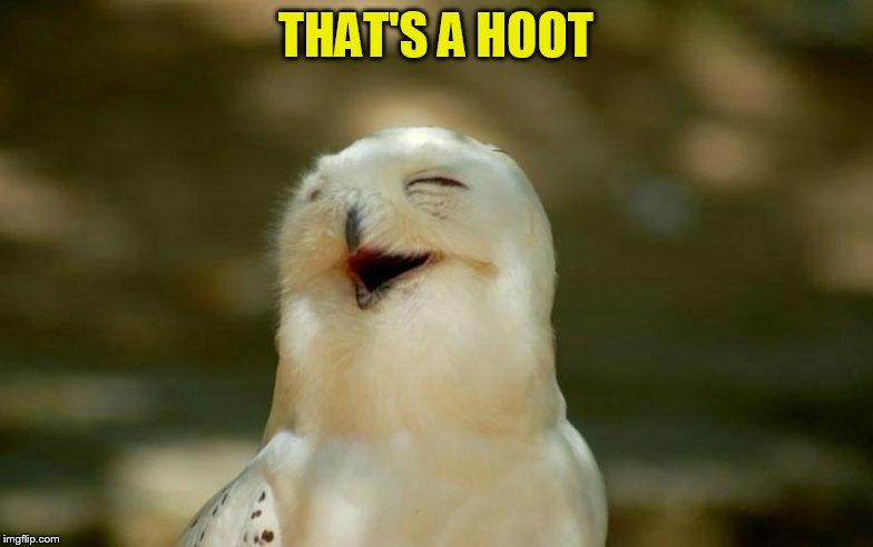 THAT'S A HOOT | made w/ Imgflip meme maker