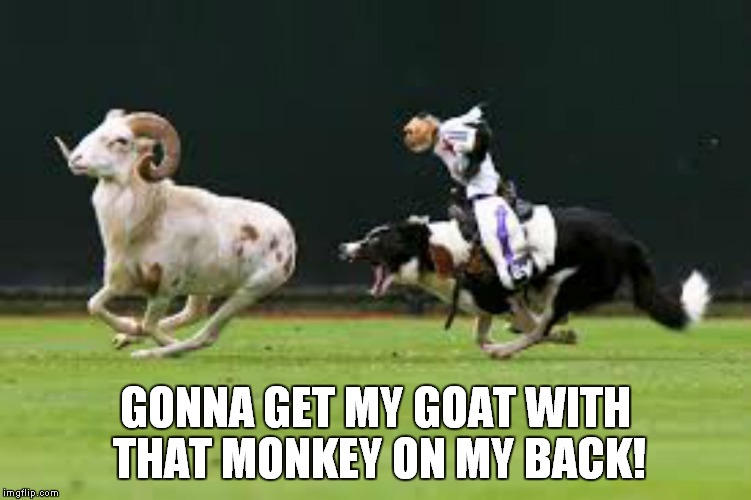 GONNA GET MY GOAT WITH THAT MONKEY ON MY BACK! | made w/ Imgflip meme maker