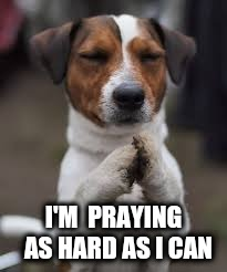 I'M  PRAYING  AS HARD AS I CAN | made w/ Imgflip meme maker