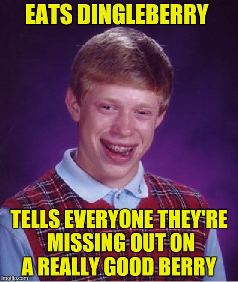 Bad Luck Brian Meme | EATS DINGLEBERRY TELLS EVERYONE THEY'RE MISSING OUT ON A REALLY GOOD BERRY | image tagged in memes,bad luck brian | made w/ Imgflip meme maker