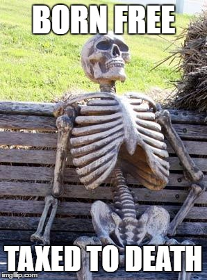 Waiting Skeleton |  BORN FREE; TAXED TO DEATH | image tagged in memes,waiting skeleton | made w/ Imgflip meme maker
