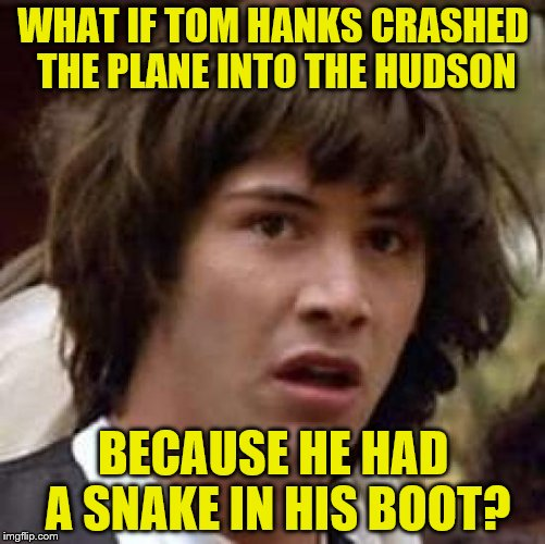 Someone's confused | WHAT IF TOM HANKS CRASHED THE PLANE INTO THE HUDSON BECAUSE HE HAD A SNAKE IN HIS BOOT? | image tagged in memes,conspiracy keanu | made w/ Imgflip meme maker