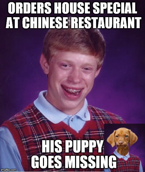 Credit to PUNbeliveable for the inspiration. | ORDERS HOUSE SPECIAL AT CHINESE RESTAURANT HIS PUPPY GOES MISSING | image tagged in memes,bad luck brian,bad luck raydog | made w/ Imgflip meme maker